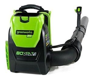 Greenworks Cordless Backpack Leaf Blower