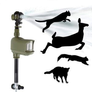 scare cats by using sprinkler